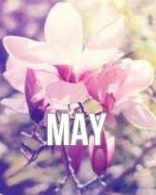 may :D