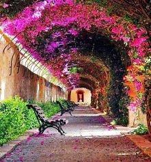 Kto wie gdzie takie cudowne miejsca? :(