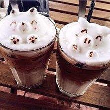 kawa, niedzwiadek i świnka