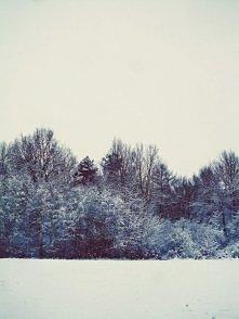 zima w obiektywie  zaprasza...