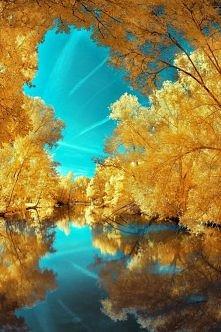 jesień...