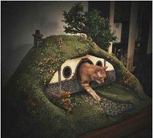 Domek z Hobbita dla kota ^_^