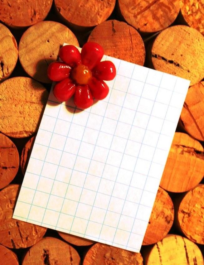 """""""Czerwony kwiatek"""" Lakierowana pinezka z główką zrobioną z modeliny (modelina). Wymiary: jedna kratka to 0.5cm. Więcej na: puszeczka pandorki facebook"""