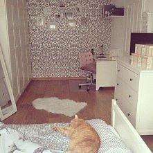 Kot i tapeta, coś cudnego ^,^