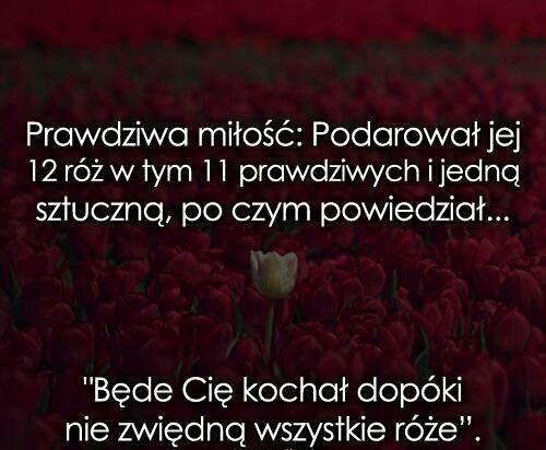 Słodkie Na Teksty Cytaty I Inne Zszywkapl