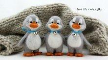 Pingwinki :)