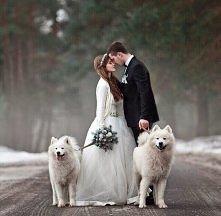 Para młoda z psami