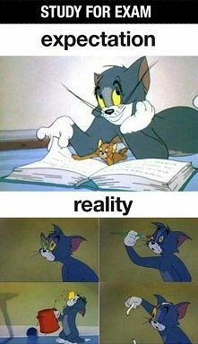 study for exam :)