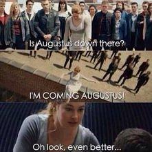 Tris-Hazel