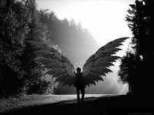 Angels never die!