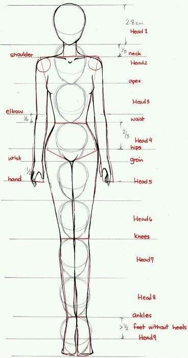 idealne proporcje:)