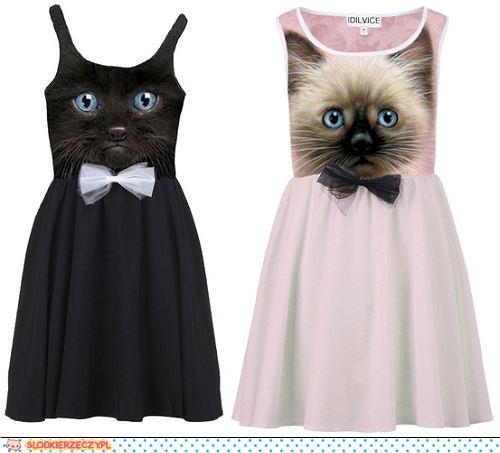 Sukienka z kotem ;) na Sukienki :) Zszywka.pl