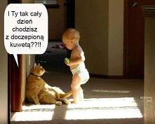 doczepiana kuweta :)