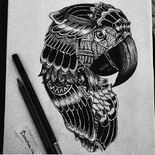Moj rysunek papuga ♥