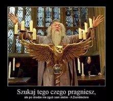 #4 Harry Potter