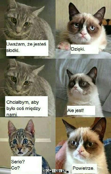 ha ha ha ;-)