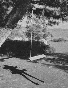 """""""Śmierć nie jest przeciwieństwem życia, a jego częścią.""""    -Haruki Murakami"""