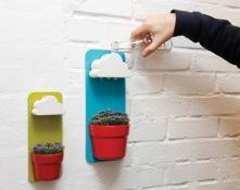 Rainy Pot -