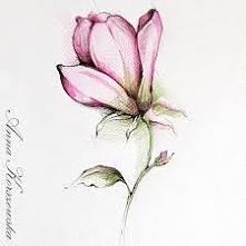 Ale ładny kwiat kto umie tak narysować daje :) w komentarzu ... Ale fajnie że ktoś ma takie umiejętności plastyczne :)