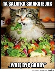 haha :D kochamy salatki xD