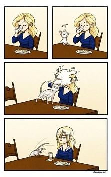 życie z kotem  lekcja 344 ;d
