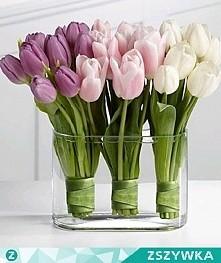 Jejku... jakie cudowne są te tulipany ^^