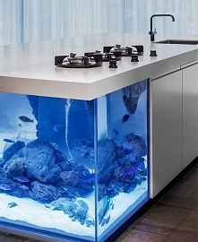 kuchenna wyspa-akwarium