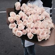 Piękne róże *.*