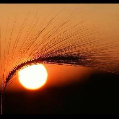 słońce patrzy ;-)