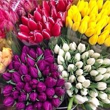 Cięte kwiaty - Jak przedłuż...