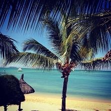 Mauritius- prawdziwy raj na Ziemi