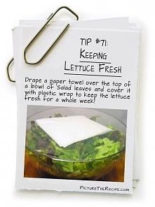 Sposób na świeżą sałatę:  ~ sałatę włożyć do miski ~ na wierzch liści położyć papierowy ręcznik ~ zakryć wszystko szczelnie folią spożywczą ~ sałata swieża nawet przez tydzień!