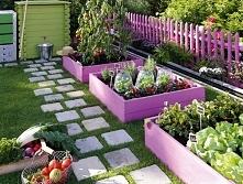 Super pomysł na ogród warzy...