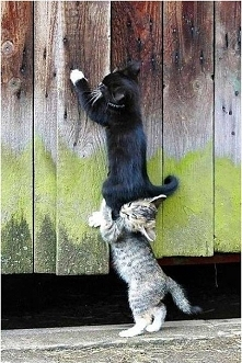 Grunt to współpraca