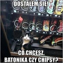 WŁASNY DYSTRYBUTOR ZE SŁODK...