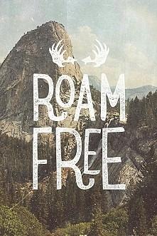 roam free :v