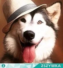 siemkaB-)
