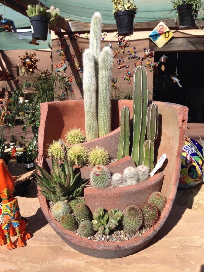 Super pomysł na kaktusową kompozycję :)