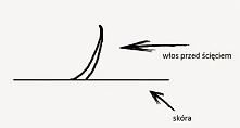 Mity dotyczące włosów - depilacja