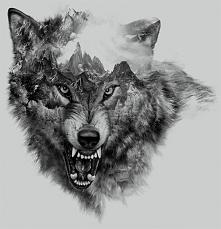 Wolf collage