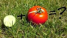 Ogórek i pomidor - łączyć c...