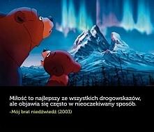 """""""Mój brat niedźwiedź"""""""