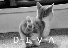 D-I-V-A