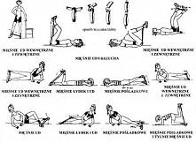 ćwiczenia.