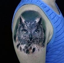 tatuaże ptaki sowa na ramieniu