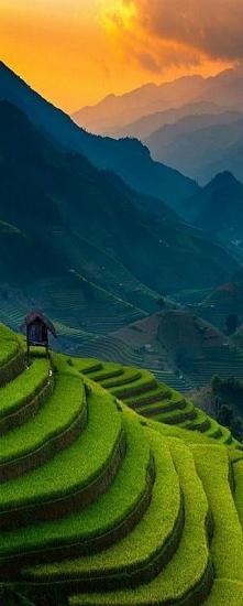 Zachód słońca nad ryżowymi tarasami - Mu Cang Chai, Wietnam