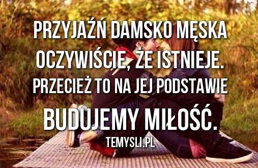 Przyjaźń Damsko Męska Na Myśli Cytaty Zszywkapl