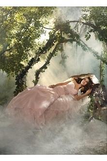 Alfred Angelo Wedding Dresses Style 218 Sleeping Beaty