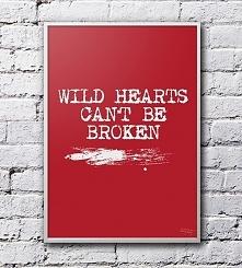so stay wild!