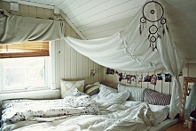 BED *.*